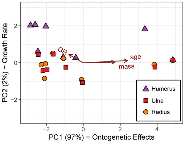 Robust principal components analysis of the cardinal octants from the humerus, ulna, and radius.