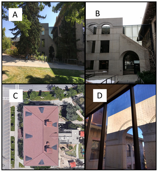 Views of the building that received bird-window collision mitigation.