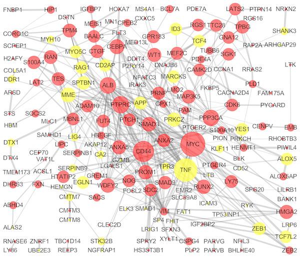 PPI network of DEGs.