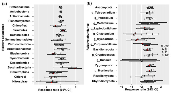 Responses ratio analysis of changes in the relative abundance of dominant bacterial phyla (A) and fungal phyla/genera (B) in response to N, P and NP treatment compared to the control treatment at the 95% confidence interval.