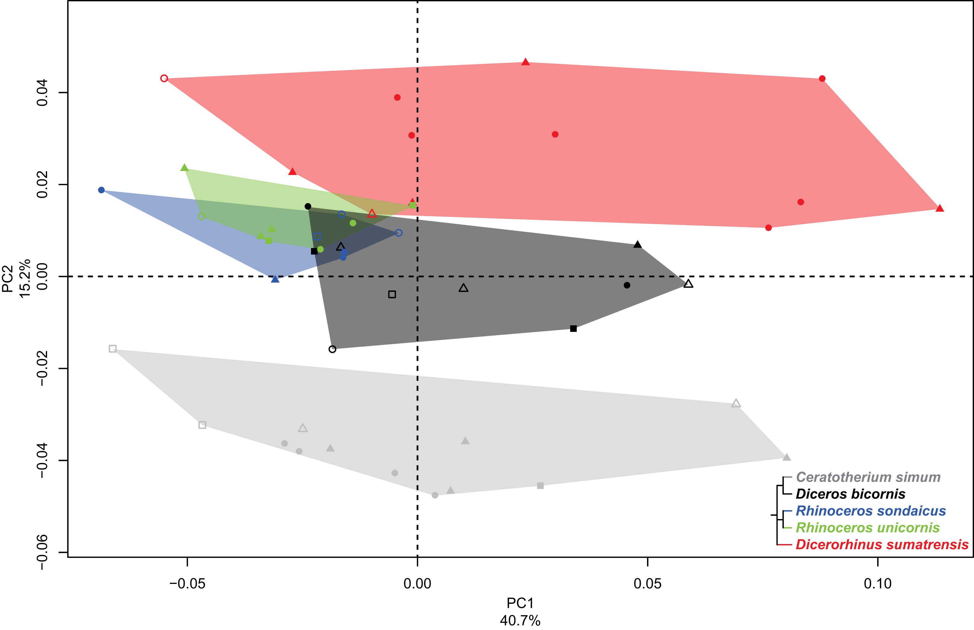 Interspecific Variation In The Limb Long Bones Among Modern