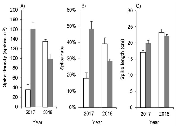 Effects of mowing and tilling on the heading of Spartina alterniflora.