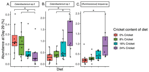 Diets with and without edible cricket support a similar