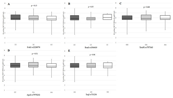 Baseline serum HCV RNA according to VDR polymorphisms in patients with chronic HCV infection.