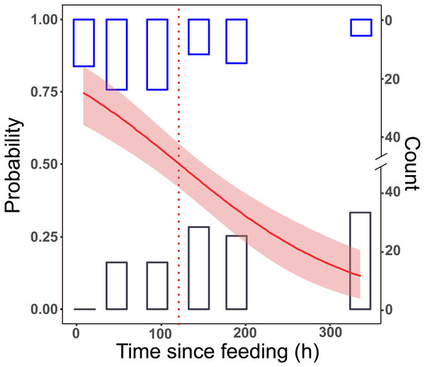 Detection of prey DNA in T. oblongus specimens' gut content with diagnostic PCR reaction.