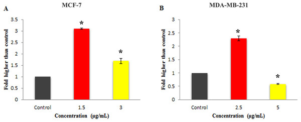 Effect of Mn complex on caspase-3/7 enzymatic activity.