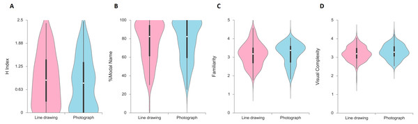 Distribution of picture naming measures in Experiment 1, displayed as violin plots by picture format.