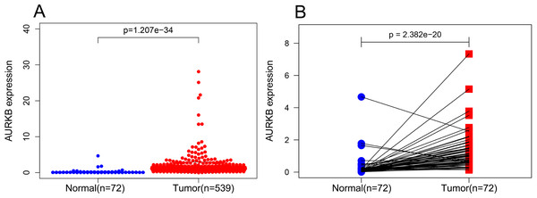 AURKB was significantly overexpressed in ccRCC compared to normal or adjacent normal tissues.