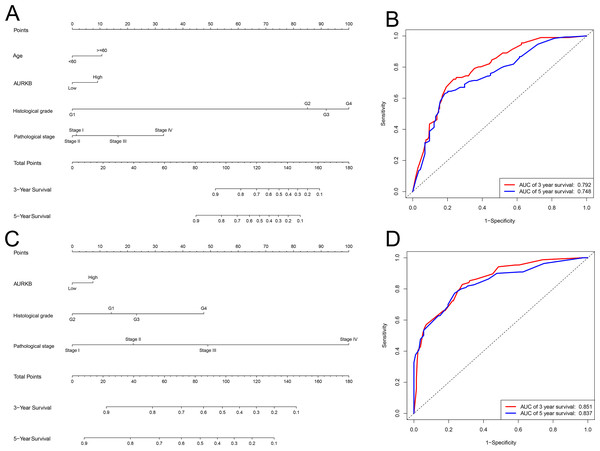 Nomogram and ROC plots for the prediction of outcome in patients with ccRCC.