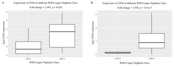 Differentially expressed level of CD36 in glomerular tissues of different WHO Lupus Nephritis Class.