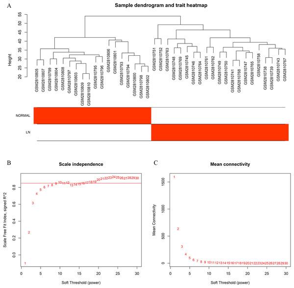 Sample cluster dendrogram and soft-thresholding values (β) estimation.