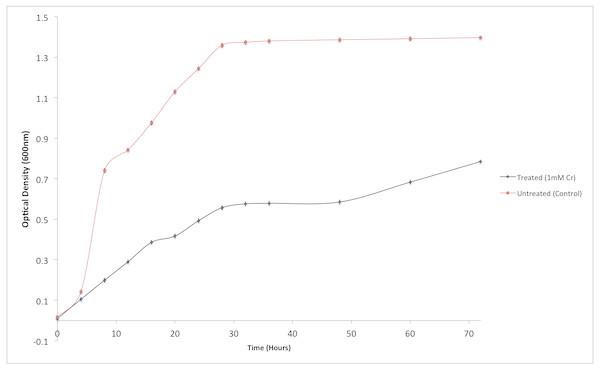 Effect of chromium (Cr6+) on the growth of Staphylococcus aureus strain K1.