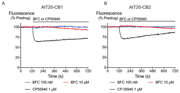The effects of brodifacoum (BFC) and CP55940 in AtT20 cell expressing CB1 or CB2.