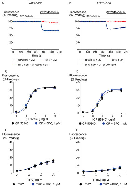 Brodifacoum (BFC) effect on CP55940 and Δ9-THC induced hyperpolarization of AtT20 cell expressing CB1 or CB2.