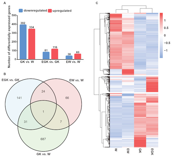 Changes in hypothalamic gene expression profiles.