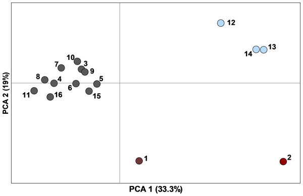 Principal component analysis of pairwise F′ST values determined with ten nuclear microsatellites, between 16 sampling sites (n=449 individuals) with ≥10 Texas horned lizards, Phrynosoma cornutum, each.