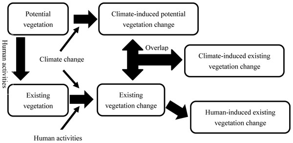 Sketch map for delimiting individual contributions of human disturbances and climate changes on vegetation.