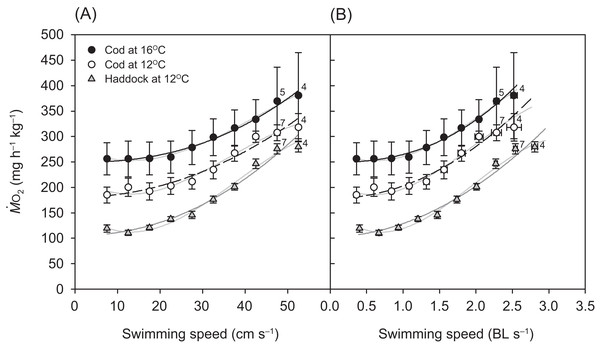 Metabolic rate of cod and haddock during swimming.