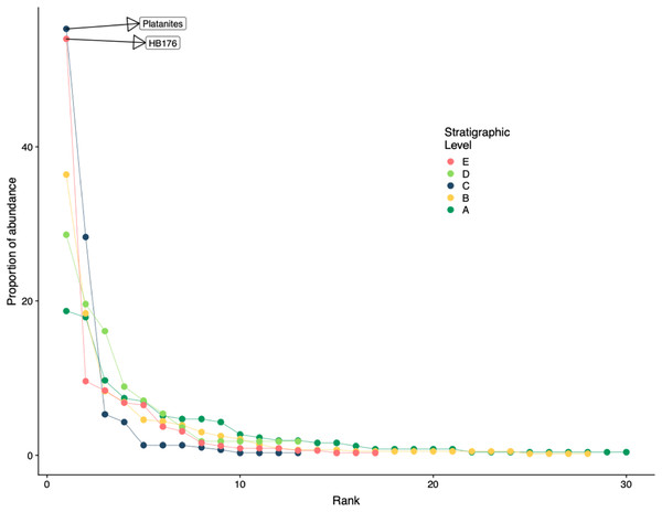 Rank abundance curve for all stratigraphic levels.