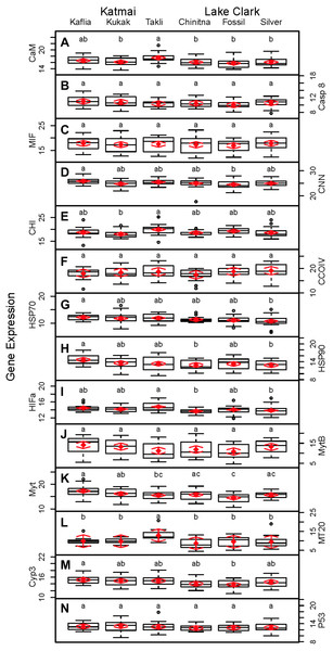 Boxplots of gene transcription data (normalized CT values) obtained from 120 mussels collected at six sites in Lake Clark and Katmai National Parks and Preserves.