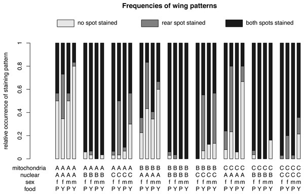 Relative frequencies of wing patterns.