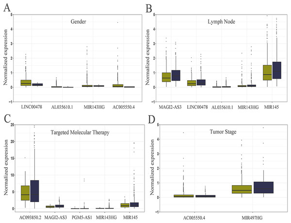 Relationship between the expression of core lncRNAs and different clinical parameters in breast cancer from TCGA.