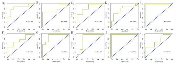 Validation of diagnostic value of core lncRNAs by ROC curves based on GEO dataset (GSE125677).