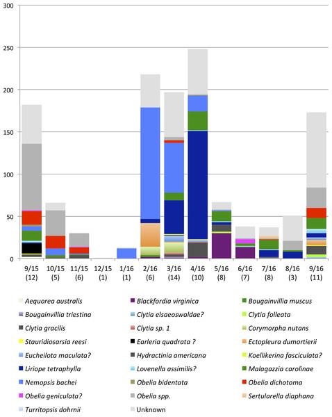 Monthly medusa abundance and species richness.