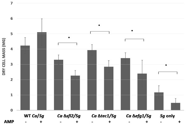 C. albicans transcriptional regulators Sfl2, Tec1 and Efg1 affect ampicillin resistance in polymicrobial biofilms with S. gordonii.