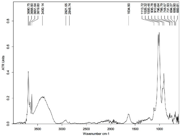 FTIR spectrum of the HCl-treated skin sample collected using Attenuated Total Reflectance (ATR) in absorption mode.