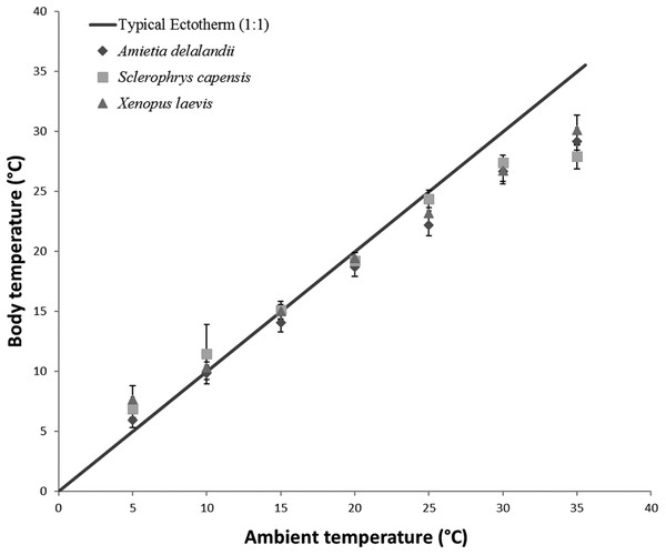 Increasing body temperature as a function of ambient temperature in African anurans.