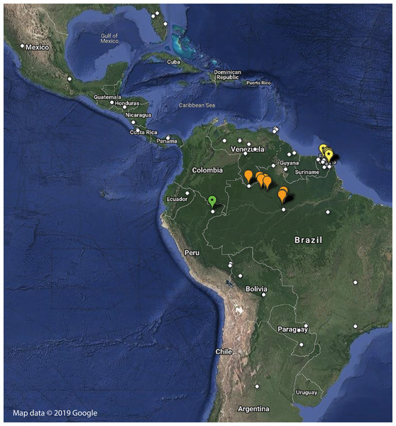 Distribution of examined georeferenced specimens of Mantoididae (see Table S1; Data S1).