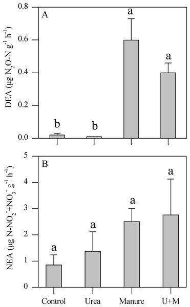 Denitrifying enzyme activity (DEA, A) and nitrifying enzyme activity (NEA, B) as affected by addition treatments in soil of the drip-irrigated cotton field used in this study.