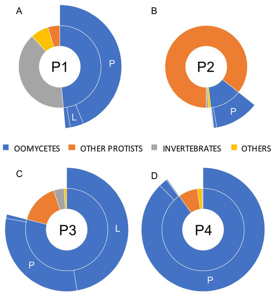 Relative taxonomic distribution of cox1 sequences generated using the PacBio sequencing technology platform.