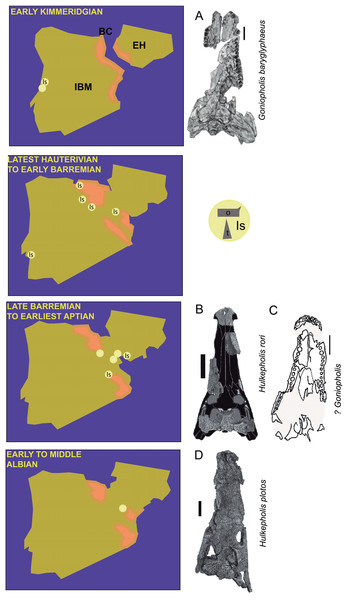 Paleogeographic maps of the Iberia Peninsula and Goniopholididae fossil record.
