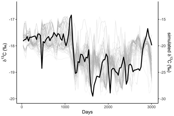 Correlations among simulated δ13C from the top 10% best fitting migratory movement models (grey lines, right hand y-axis) and δ13C from baleen (black line, left hand y-axis; see Fig. 2).