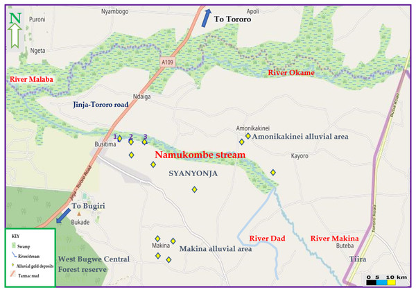 Map of Namukombe stream showing the location of the sampled sluices.