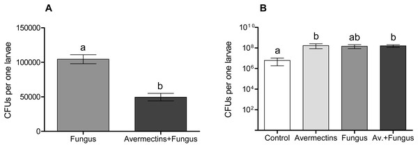 Colony forming units of M. robertsii (A) and cultivable bacteria (B) in whole-body homogenates of Ae. aegypti larvae after treatment with M. robertsii, avermectins and their combination.