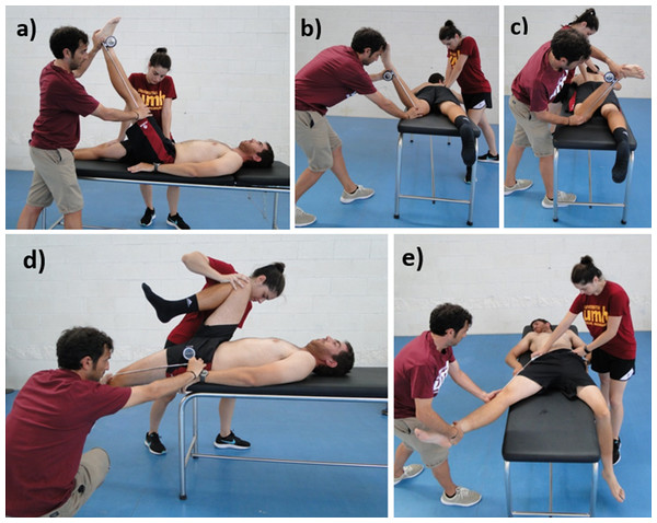 Assessment of the hip range of motion:  (A) passive straight leg raise test; (B) passive hip internal rotation test; (C) passive hip external rotation test; (D) modified Thomas test; (E) hip abduction with knee extended test.