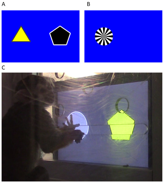 Touchscreen example problem and apparatus setup.