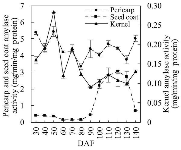 Amylase activity dynamics in developing S. tonkinensis fruit.