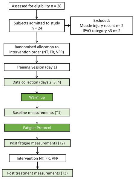 Recruitment and testing flow diagram.