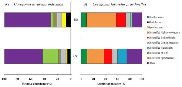 Composition of microbiota at the genus level in stomach content of C. l. pidschian (A) and C. l. pravdinellus (B).