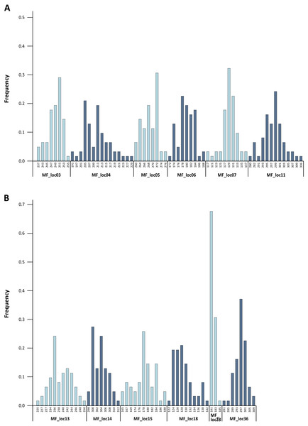 Baseline allele frequencies for all loci, averaged across all 31 analyzed individuals of M. francoismoutoui.