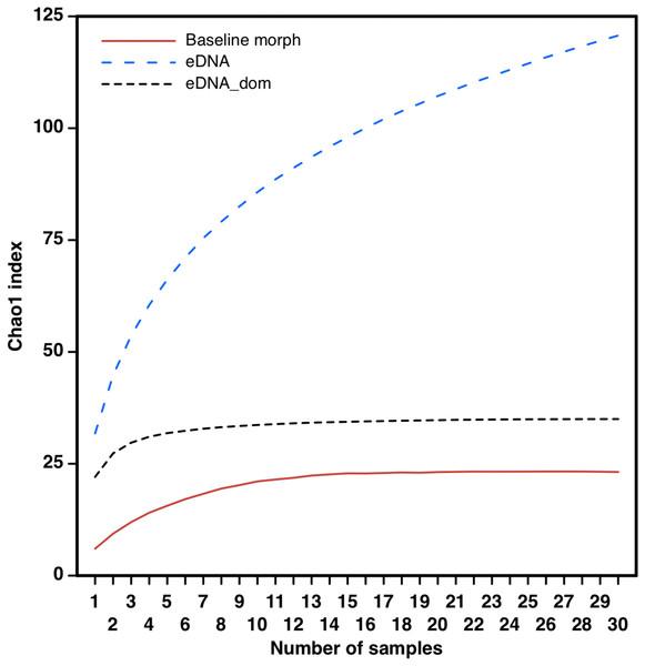 Taxa accumulation curves from eDNA samples.