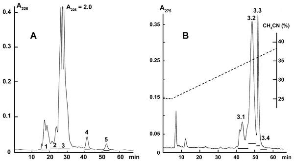 Fractionation of B. fasciatus venom.