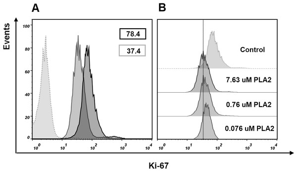 Flow cytometry analysis of Ki-67 expression in MCF7 cells.