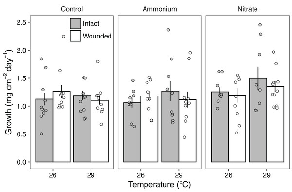 The growth rates of Pocillopora meandrina corals across treatments.