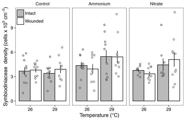 Symbiodiniaceae densities of Pocillopora meandrina corals across treatments.