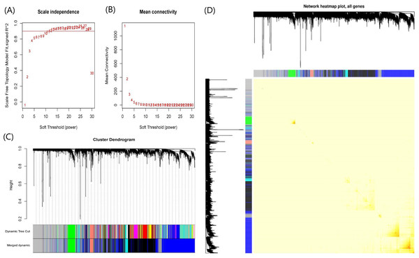 Plots in the WGCNA analysis using gene expressions in 328 UC patients and 138 controls from GPL570 datasets.